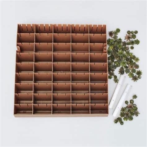 modular living wall panel kit succulent gardens