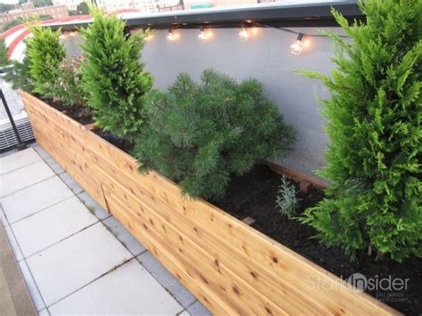 how to build a container garden box ideas and inspiration for a modern vegetable garden sow