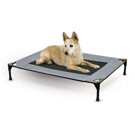 dog bed r k h pet cot raised mesh cooling dog bed