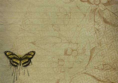 free illustration old page floral butterfly free