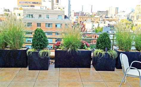roof garden plants village roof garden paver deck terrace container plants