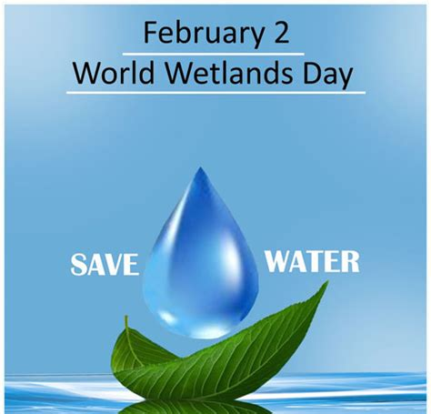 Celebrate World Wetlands Day 2 Feb With Free Wetlands Tours february 2 world wetlands day save water