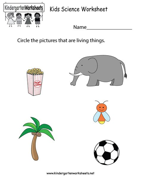 science activities for kindergarten free printable kids science worksheet for kindergarten