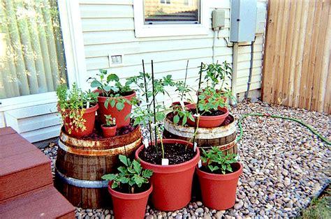 Vegetable Container Garden Ideas Gardening Container Gardening