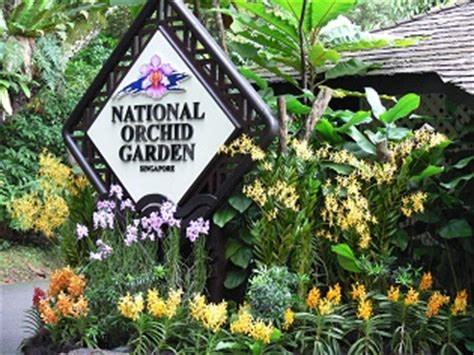 Botanic Garden Orchid Garden Singapore Botanic Gardens Workshops Guided Walks For Organised Groups Activities