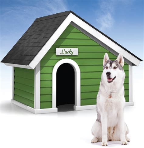 dog house winter shacking up preparing your doghouse for winter blog
