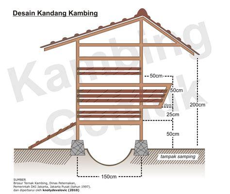 Bibit Kambing Terbaru kambinghcs metode ternak kambing