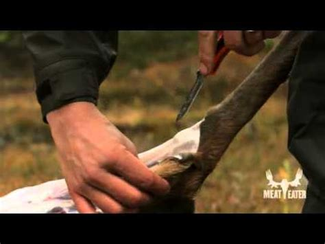 steven rinella knife field dressing tips with steven rinella meateater