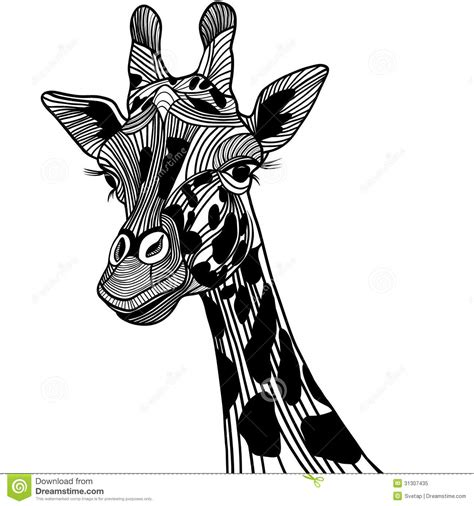 giraffe head vector animal illustration for t shir royalty