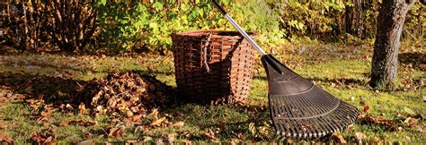 fall gardening 11 fall gardening tips right home 174