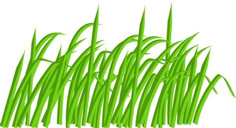 green grass clipart green grass blade clip at clker vector clip
