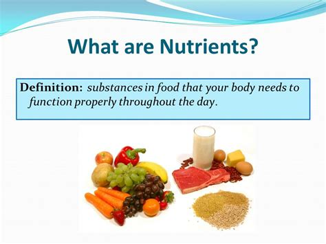 carbohydrates nutrition definition essential nutrients grade 7 health ms the importance