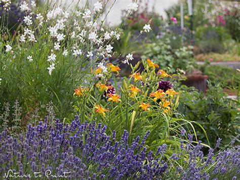 Pflegeleichte Pflanzen Für Den Garten by So Bepflanzen Sie Hangbeete Sch 246 N Und Abwechslungsreich