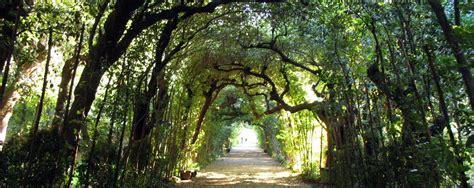 giardino di boboli prezzo giardini di boboli orari prezzi idea di casa