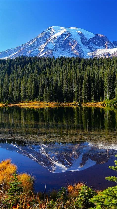 wallpaper mount rainier national park lake trees