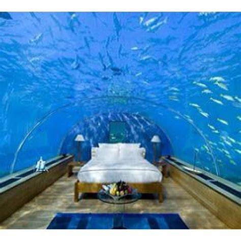 fishtank bedroom fish tank room fish tanks pinterest