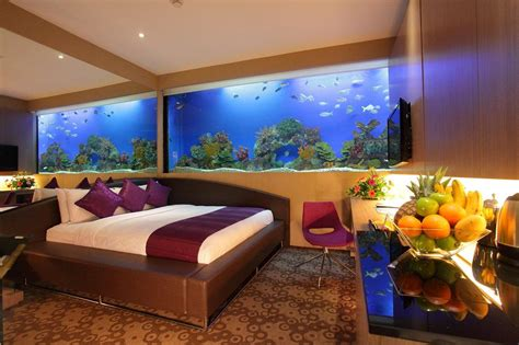 Hotels With Aquariums In The Room by Sleeping With Fishes At The H2o Hotel