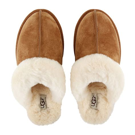 where can i buy ugg slippers where can i buy ugg slippers