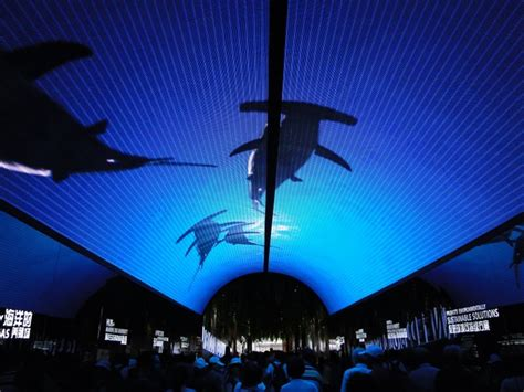 Ceiling Projection by Shanghai Expo 2010