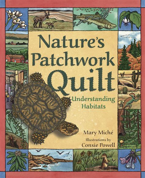 Patchwork Quilt Book - nature s patchwork quilt understanding habitats the