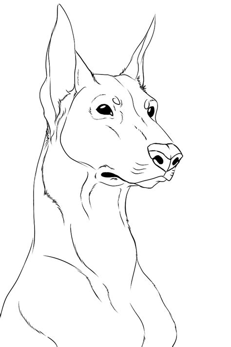 Doberman Face Coloring Pages Coloring Pages Doberman Coloring Pages