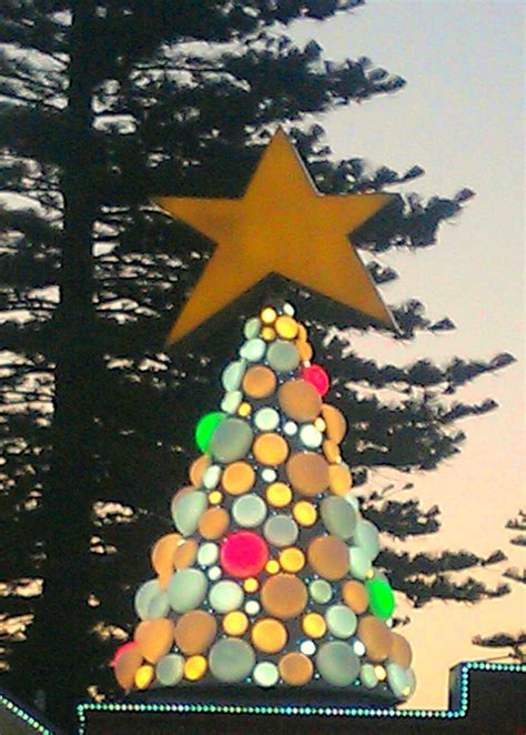 christmas trees adelaide images