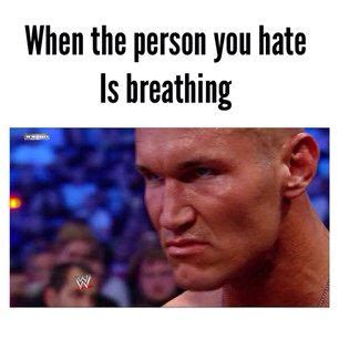 Randy Orton Meme - 1000 images about the apex predator on pinterest