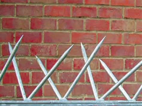fence spikes security fence spikes and toppings from
