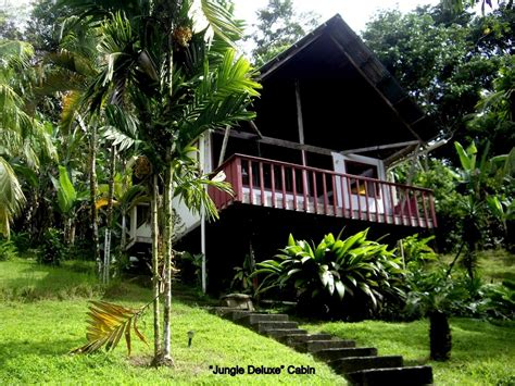 costa rica cottages mira olas pavones secluded cabins at the jungle s edge above the pavones surf 5 min