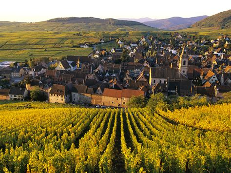 alsace france an alsace 101 good food revolutiongood food revolution