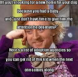 Meme creator oh you re looking for a new home for your dog because