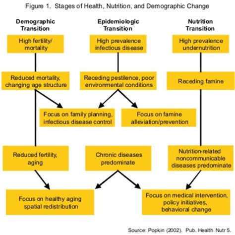 health pattern definition what is the nutrition transition nutrition transition