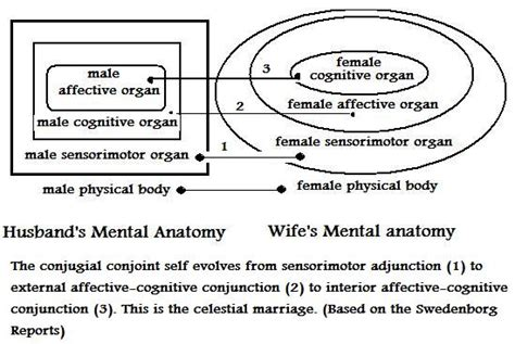 mental anatomy introduction to theistic psychology by the spiritual significance of neologisms by leon james