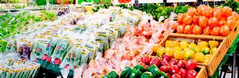 menanam lemon hidroponik amazing farm produsen salad sayuran untuk kesehatan alami