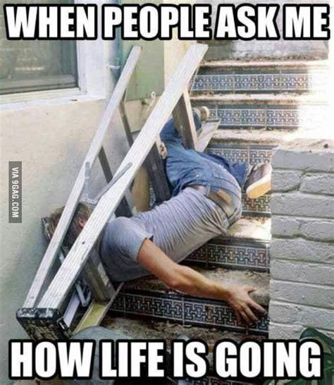 funny memes  life memeologistcom