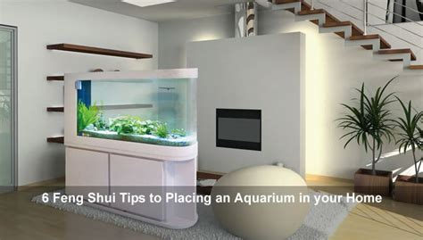 feng shui aquarium in living room how to place an aquarium in a feng shui way feng shui beginner