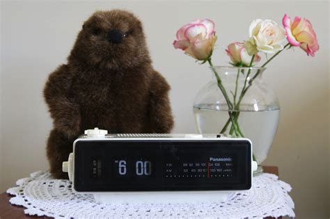 groundhog day alarm clock make a groundhog day alarm clock 171 adafruit industries