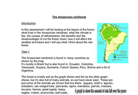Of The Rainforest Essay by The Rainforest Gcse Geography Marked By Teachers