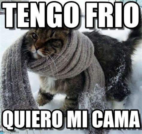 imagenes memes sobre el frio los mejores memes para aguantar mejor el fr 195 173 o