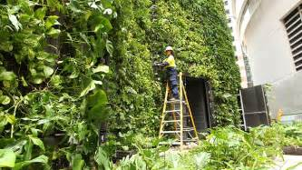 Vertical Garden Sydney Sky S The Limit With Vertical Gardens As Space