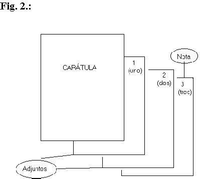 Modelo De Curriculum Vitae Foliado Y Rubricado Foliado De Los Expedientes