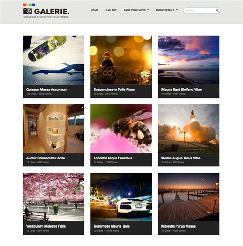 wordpress photoblog themes 45 best wordpress photography themes 2014 smashthemes