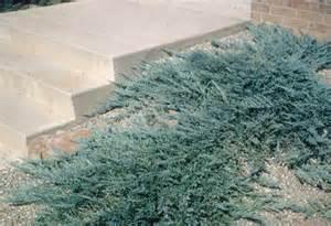 100 hardwood mulch custom garden designs