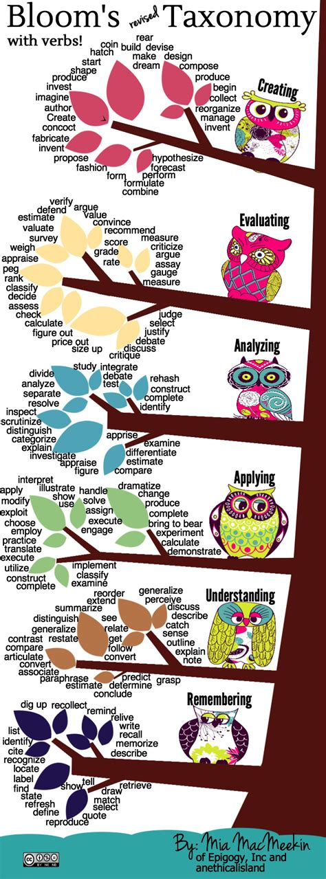 infographic bloom s revised taxonomy with verbs
