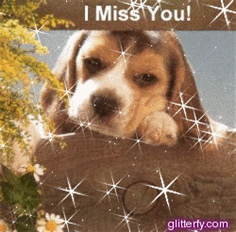 i miss you puppy glitterfy glitter graphics orkut