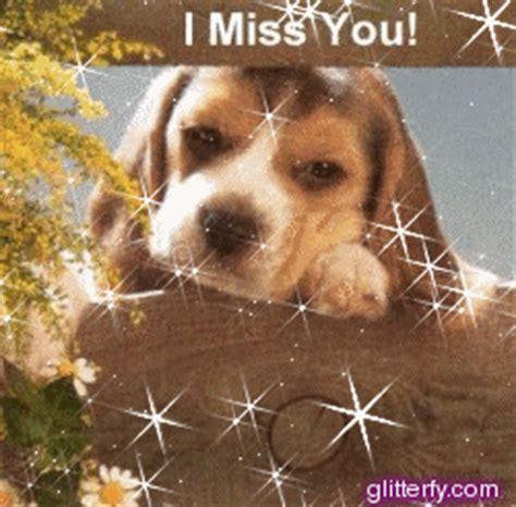 miss you puppy glitterfy glitter graphics orkut