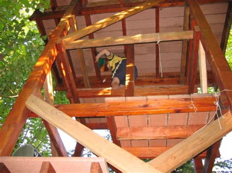 tree house siding ideas treehouse tips