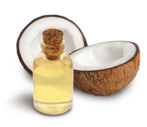 coco olio 211 leo de coco nos cabelos helena bordon