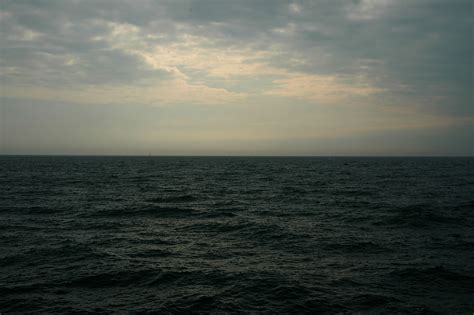 the sea navigating the absurd camus hemingway and the sea the