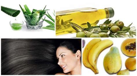 imagenes de tratamientos naturales para el cabello tratamientos naturales para el cabello seco y maltratado